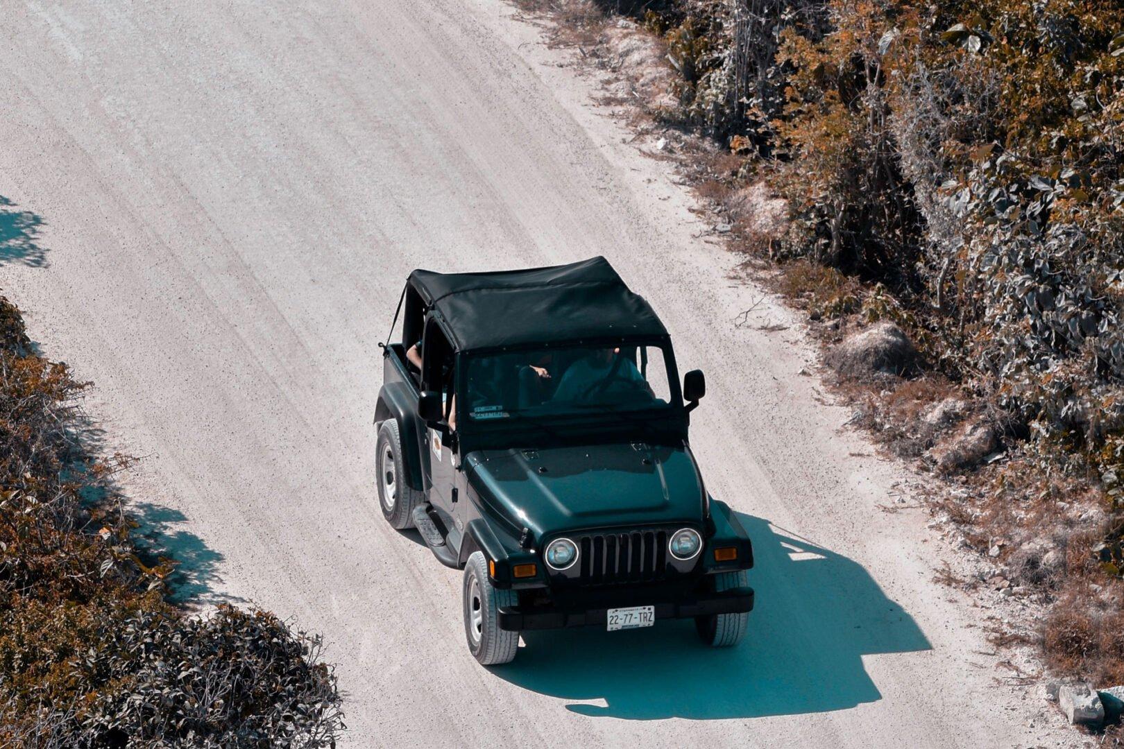 Safari Ride with Person  Photographer, Driver  & Tour Guide
